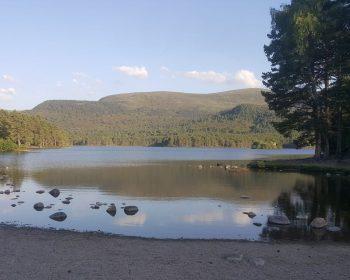 Summer at Loch an Eilein, Rothiemurchus