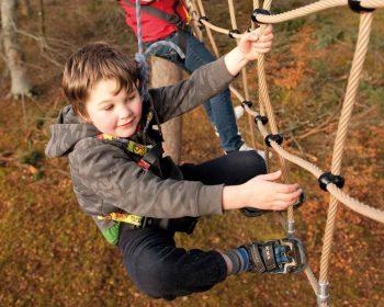 Treezone Aerial Adventure at Rothiemurchus near Aviemore