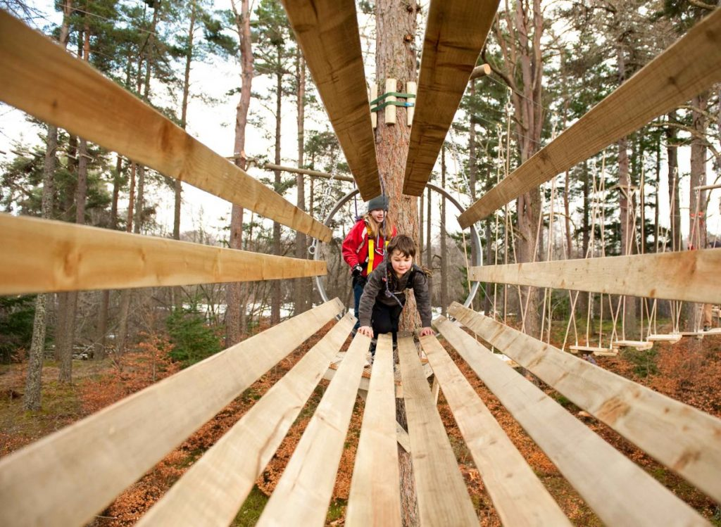 Treezone Aerial Adventure at Rothiemurchus near Aviemore
