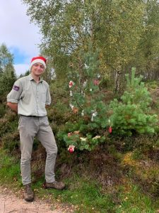 Rothiemurchus Perfectly Imperfect Scots Pine Christmas Trees for sale